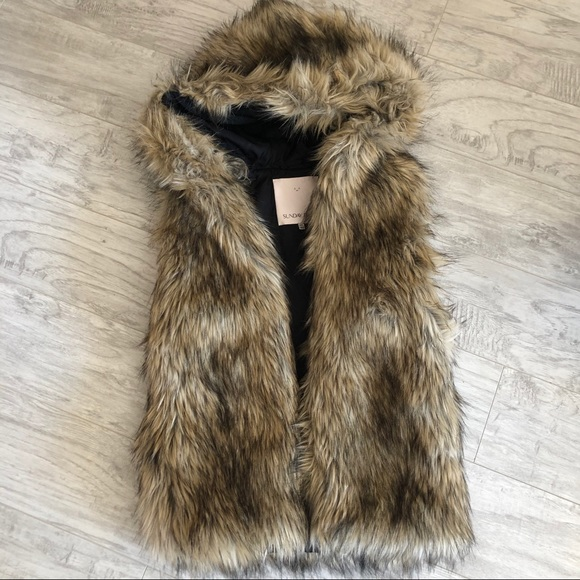 Aritzia Sunday Best Ovid Vegan Faux Fur Vest